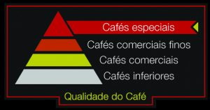Classificação do café.