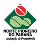 norte pioneiro